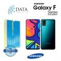 SM-F415F Galaxy F41